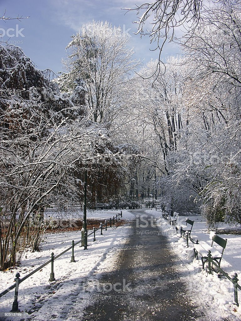 Park in winter time royalty-free stock photo
