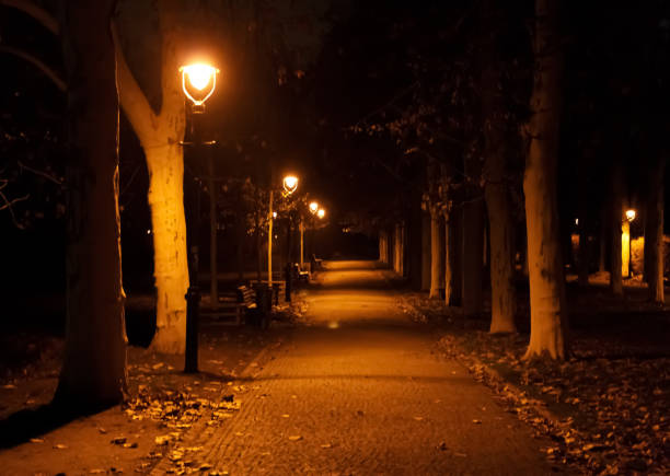 park lampposts dimly light an eerie cobblestone path - dimly stock pictures, royalty-free photos & images