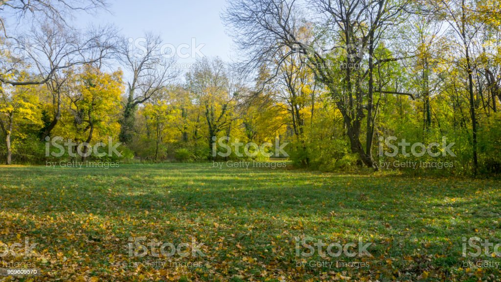 Paisaje del parque en Laxenburg cerca de Viena - Foto de stock de Aire libre libre de derechos