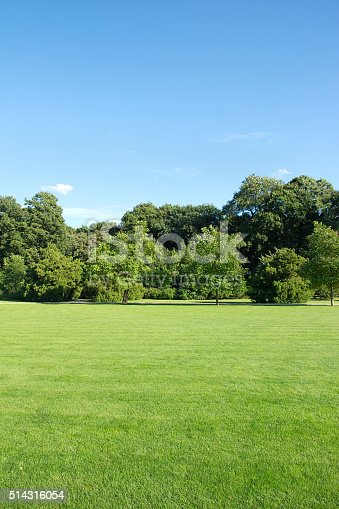 mowed lawn in the park