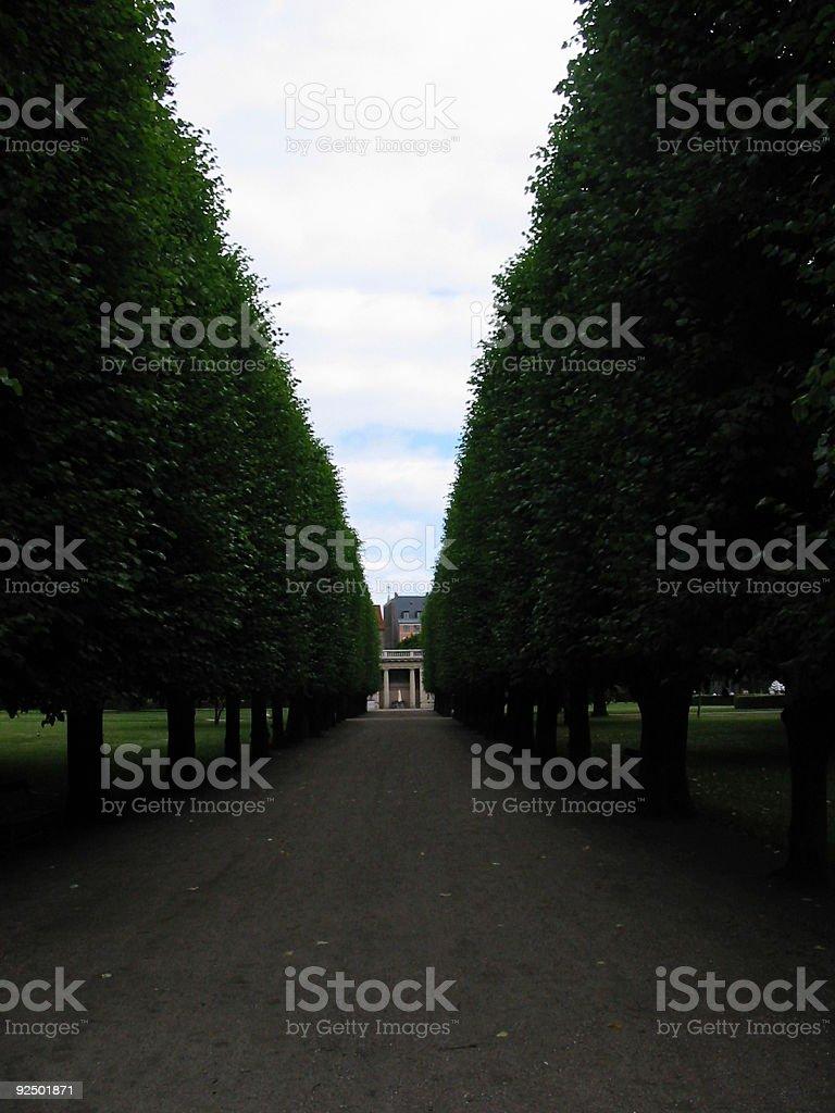 Park lane royalty-free stock photo
