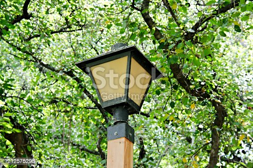 Close-up view top of park lantern under dense leaf canopy with visible tree branches at Lahaina Banyan Court Park Maui