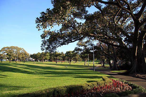Park-leben in Sydney – Foto