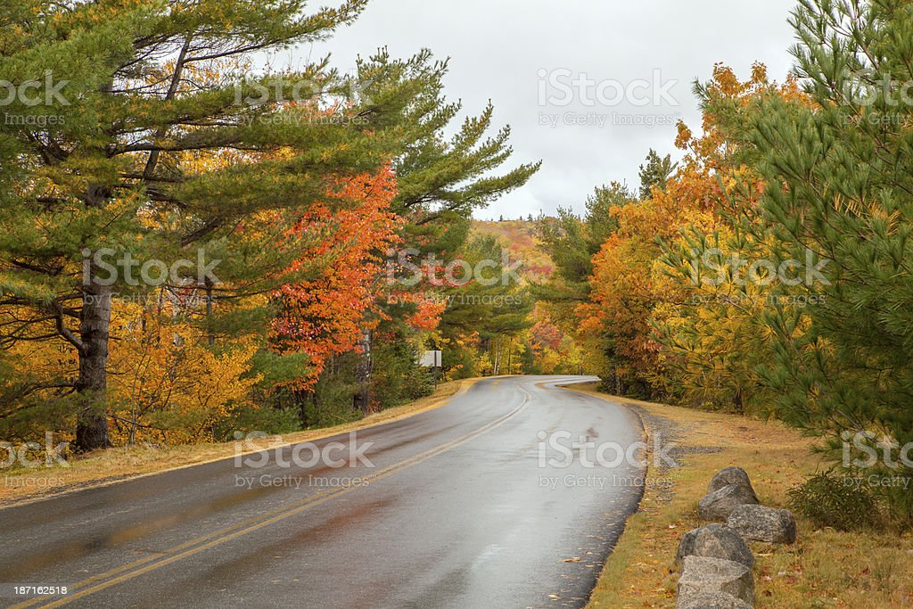 Park Loop Road in Autumn, Acadia National-Park, Maine royalty-free stock photo