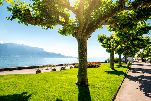 Park near Geneva lake