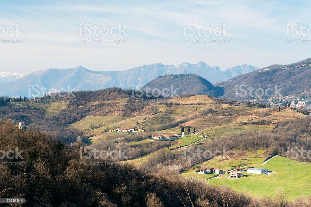 Park of Montevecchia (Brianza) stock photo