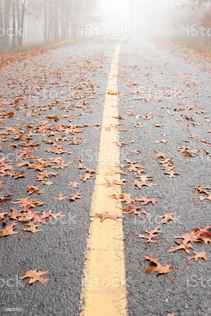 Park Pathway in Autumn stock photo
