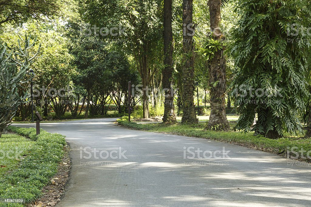 Park Pathway stock photo