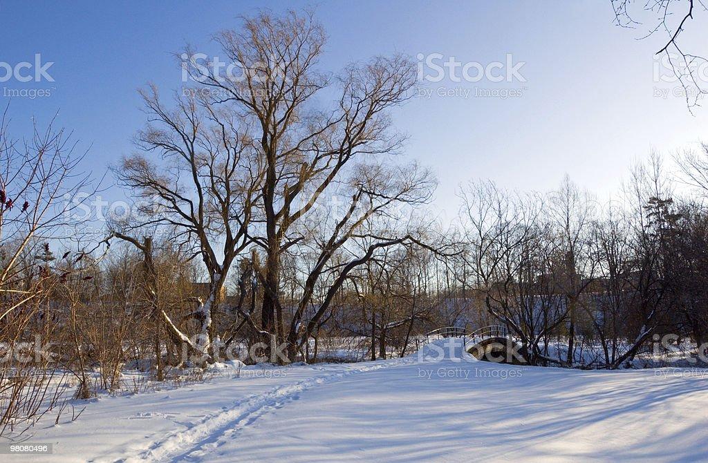 공원 royalty-free 스톡 사진