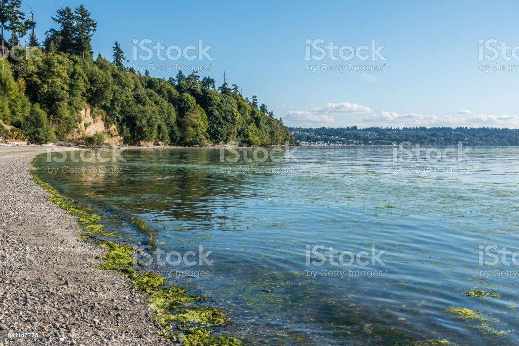 Park Shoreline stock photo