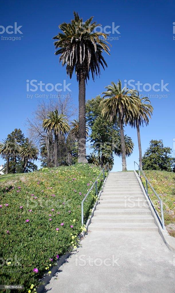 Park Steps stock photo