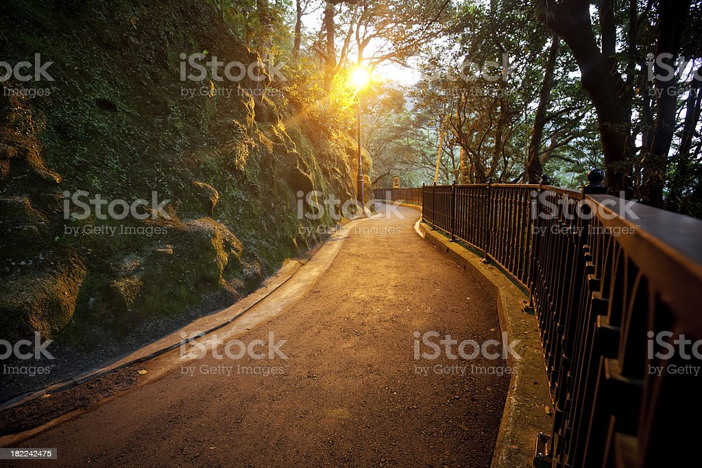 Park Way in the night royalty-free stock photo