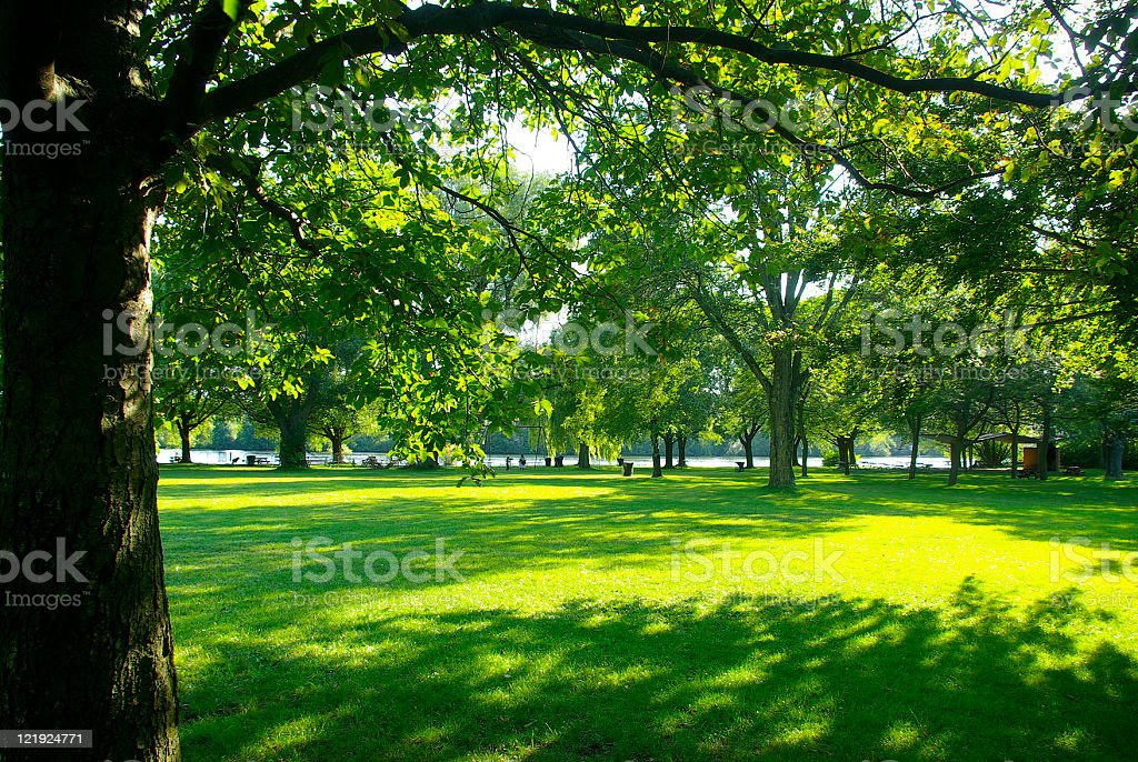 Park with beautiful lawn and trees Center IslandToronto Canda stock photo