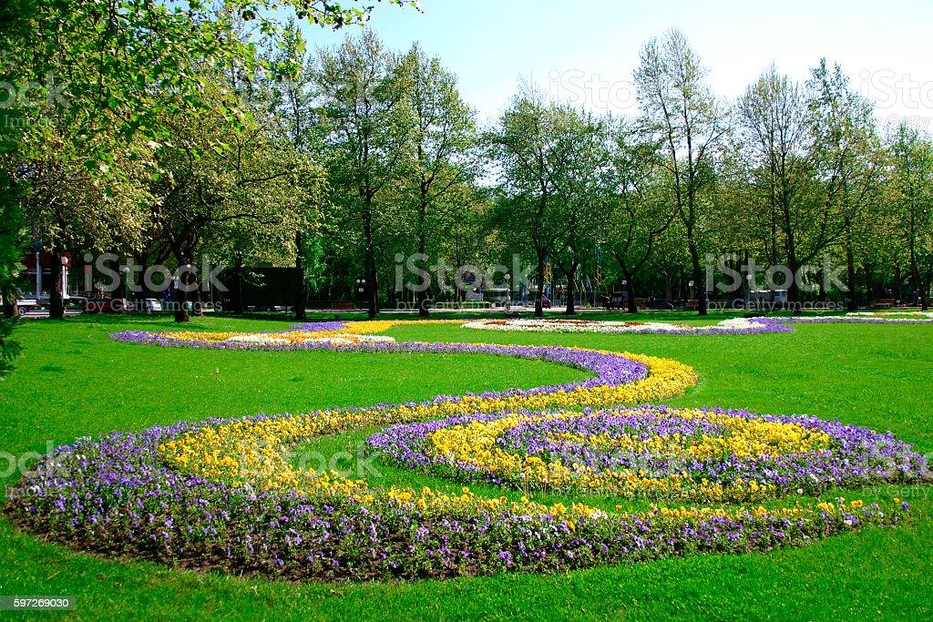 park with blooming flowers . Lizenzfreies stock-foto