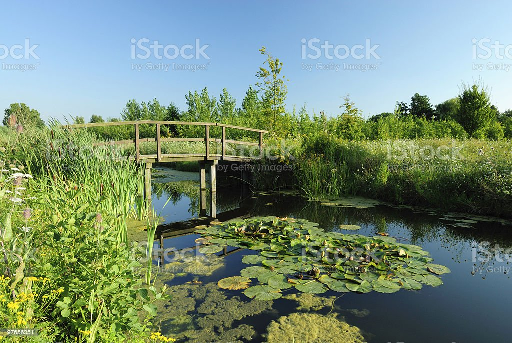 Park with ditch and wooden bridge royalty-free stock photo