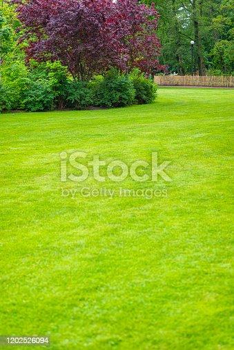Park of Gothenburg garden society in Sweden.