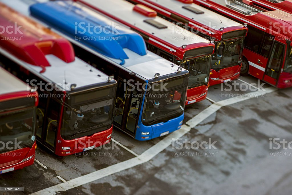 Parked buses in a row, from above. stock photo