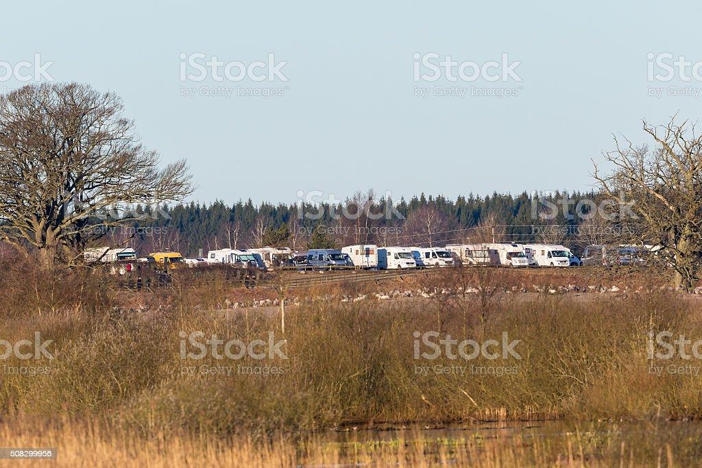 Parked campers at Hornborgasjon in spring stock photo