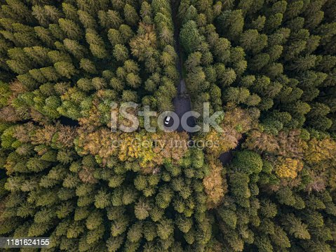 831591456 istock photo A parked car in a forest in autumn from above 1181624155