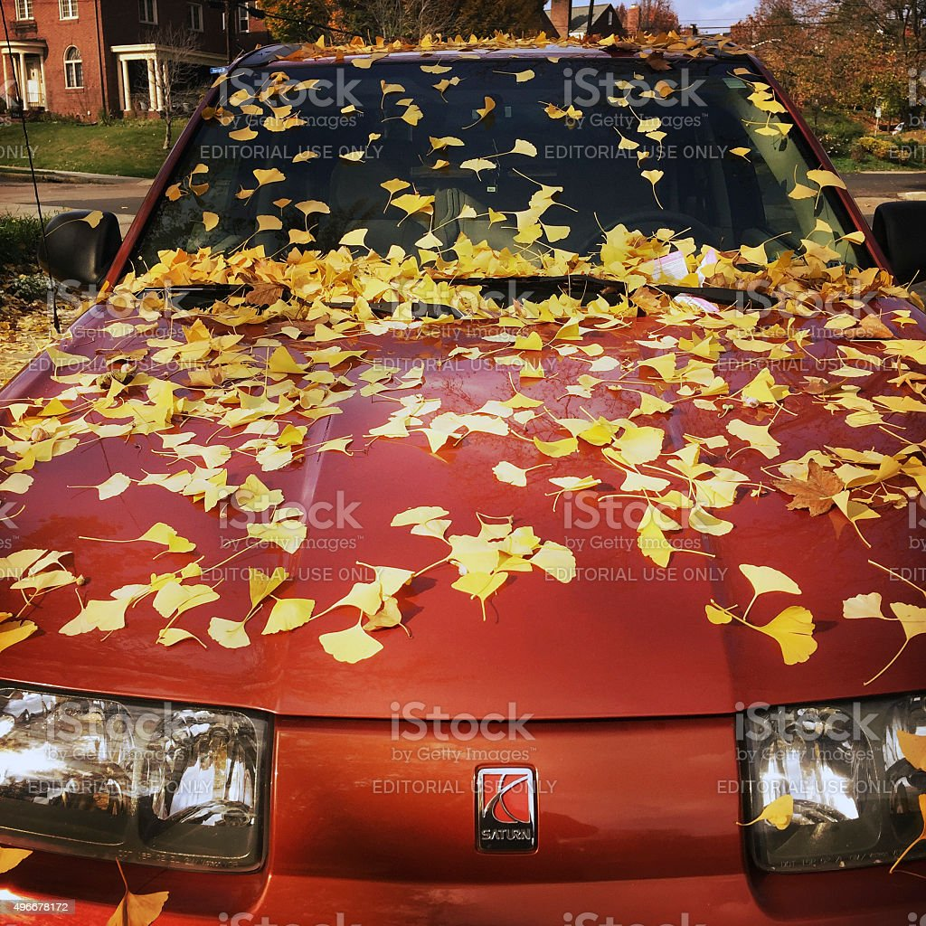 Parked Car with Autumn Leaves and Parking Tickets stock photo