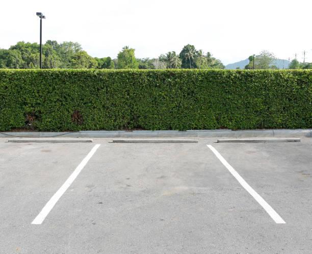 parkbucht im freien im öffentlichen park. - dunkle flecken entferner stock-fotos und bilder