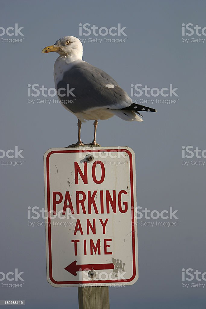 parking patrol royalty-free stock photo