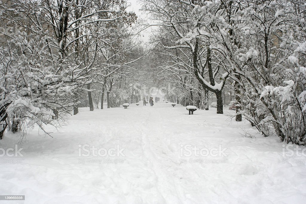 Parkway in a snow royalty-free stock photo