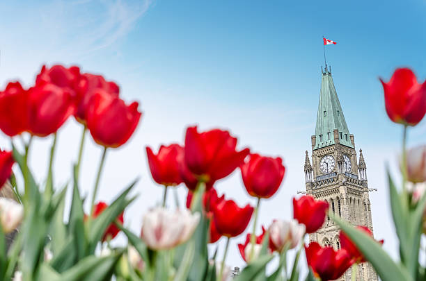 Parliament building at Ottawa during Ottawa Tulip Festival stock photo