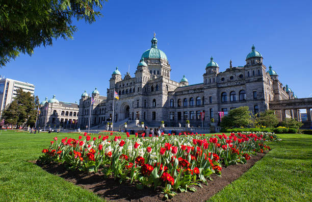 parliament building, victoria, canada - canada parliament stock photos and pictures
