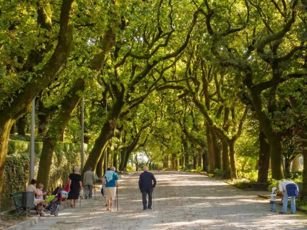 Parque Alameda - Santiago de Compostela stock photo