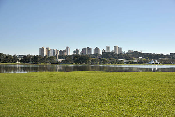 parque barigui curitiba - curitiba stock photos and pictures