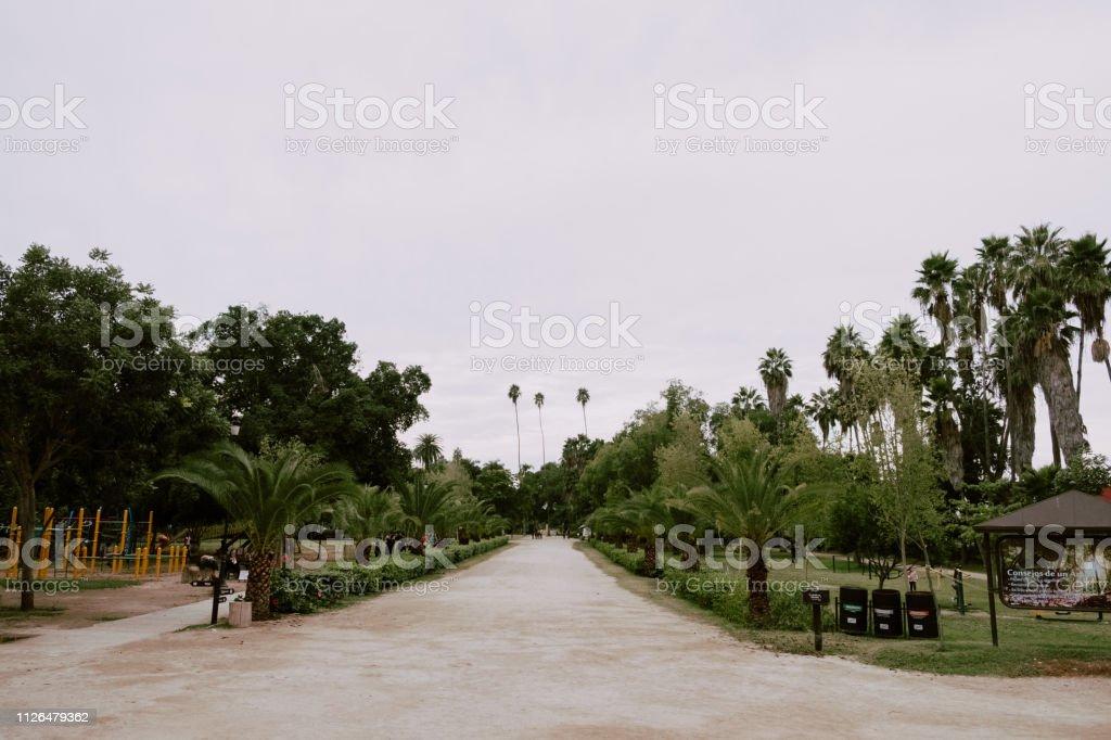 Parque Sinaloa - foto de stock