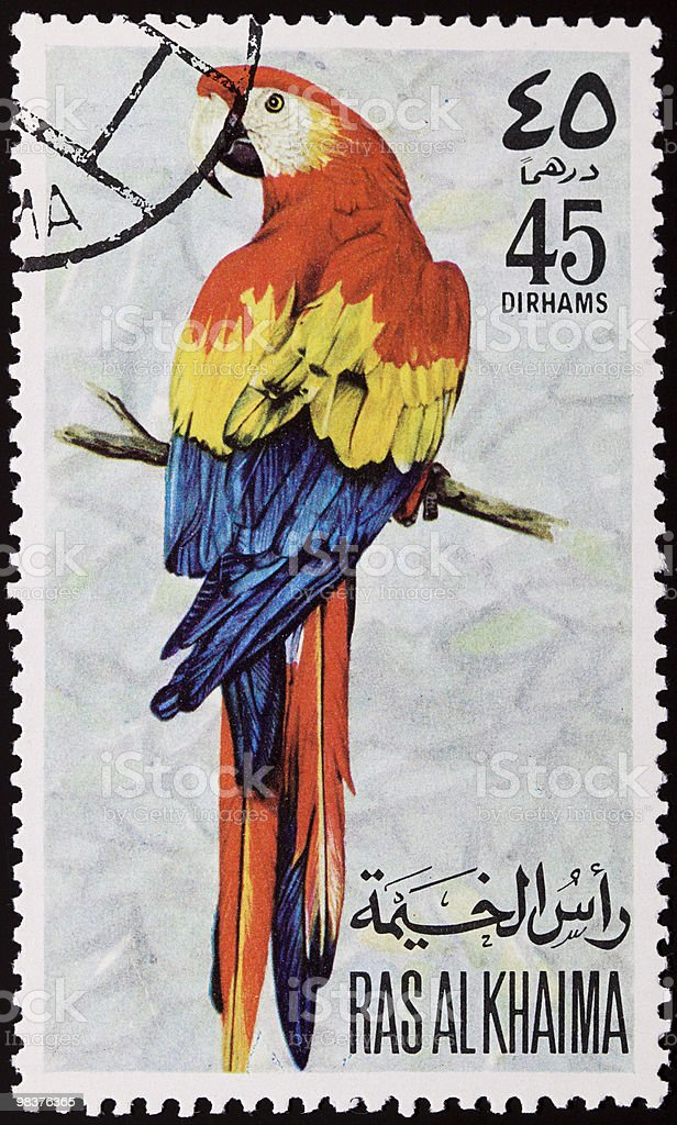 Parrot stamp royalty-free stock photo