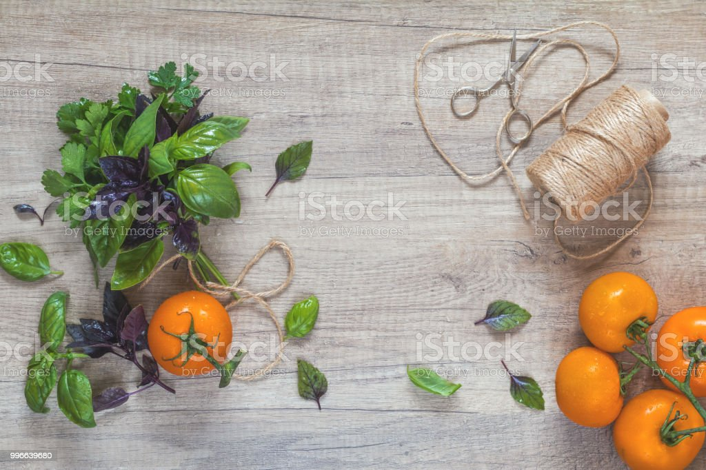 Parsley and basil bunch of bouquets, branch yellow tomatoes, scissors...