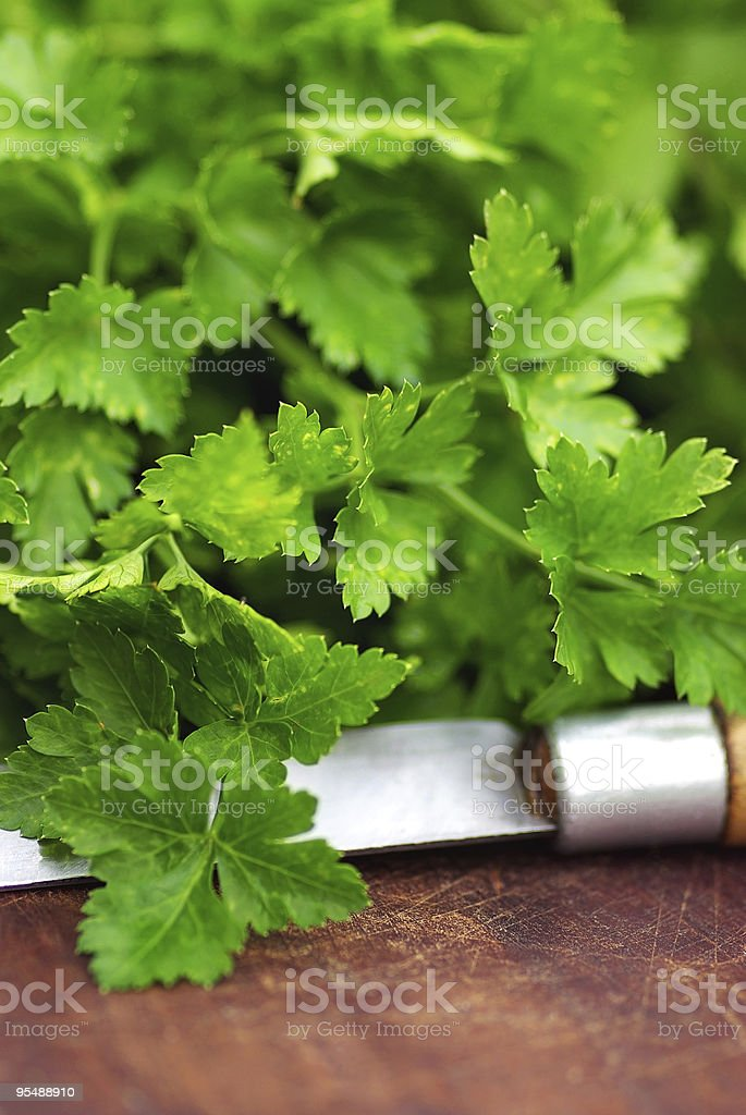 Parsley and knife. royalty-free stock photo