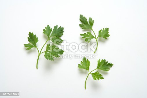 Three  branches of parsley on white