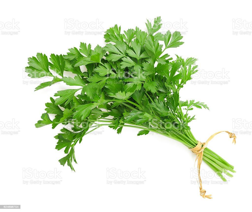 parsley bunch stock photo