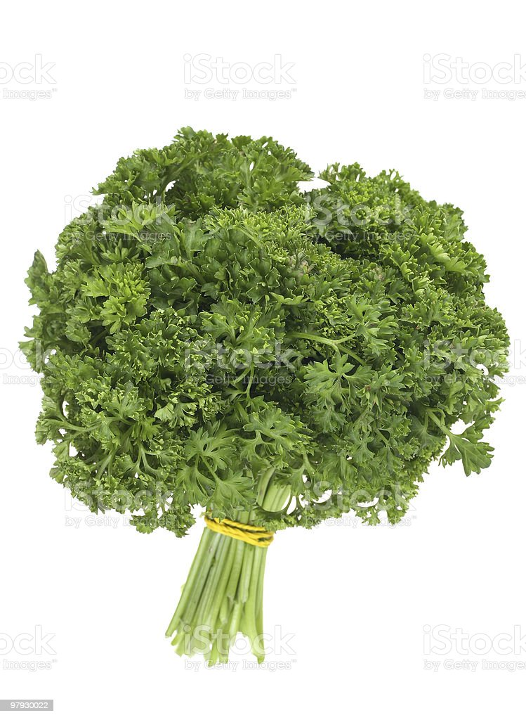 Parsley bunch royalty-free stock photo