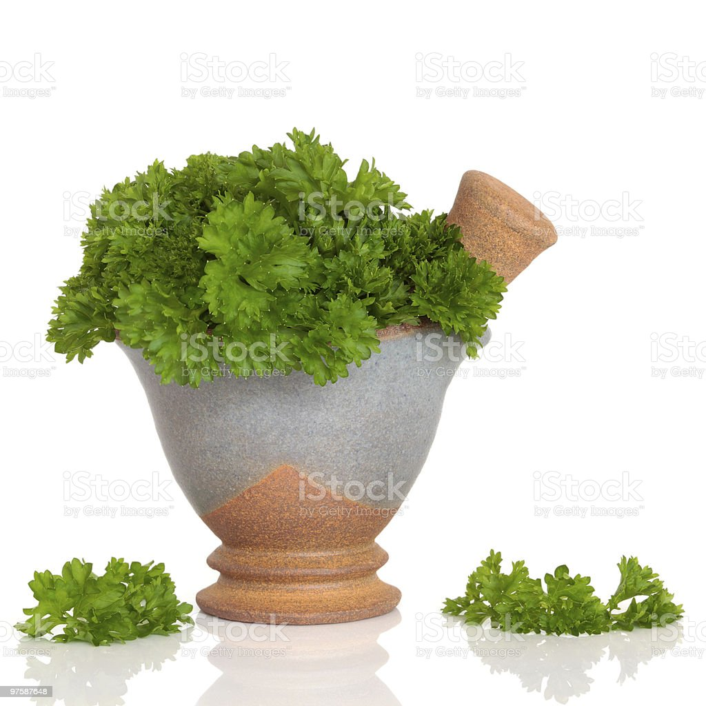 Parsley Herb Leaves royalty-free stock photo