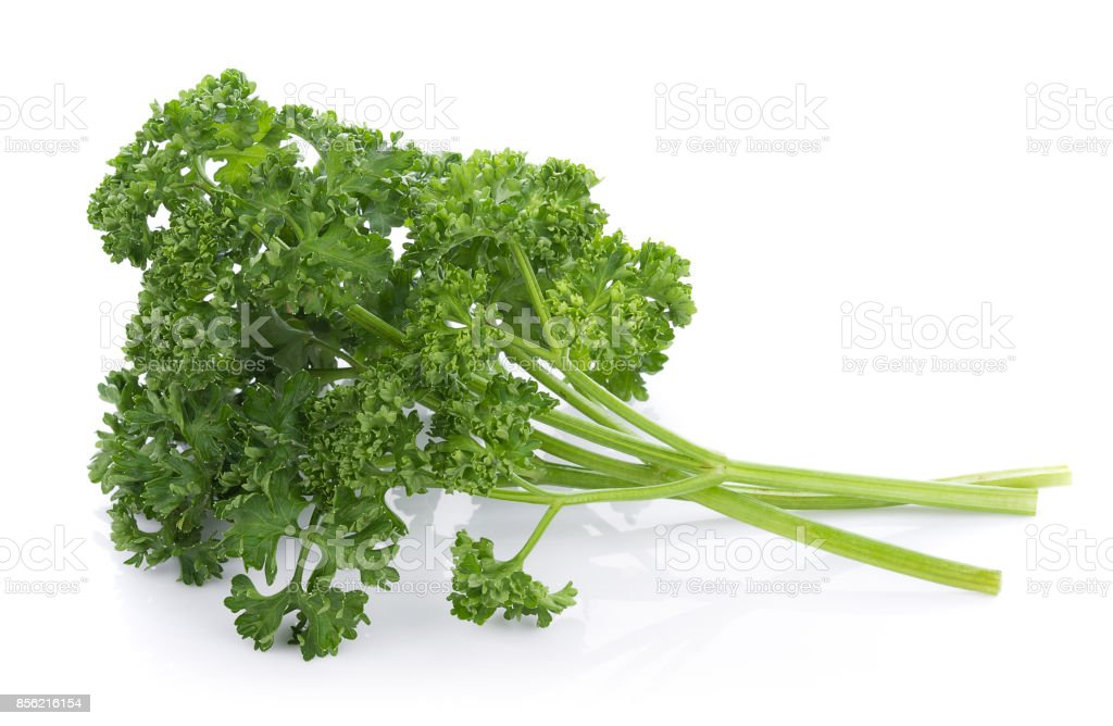 parsley isolated on a white background stock photo