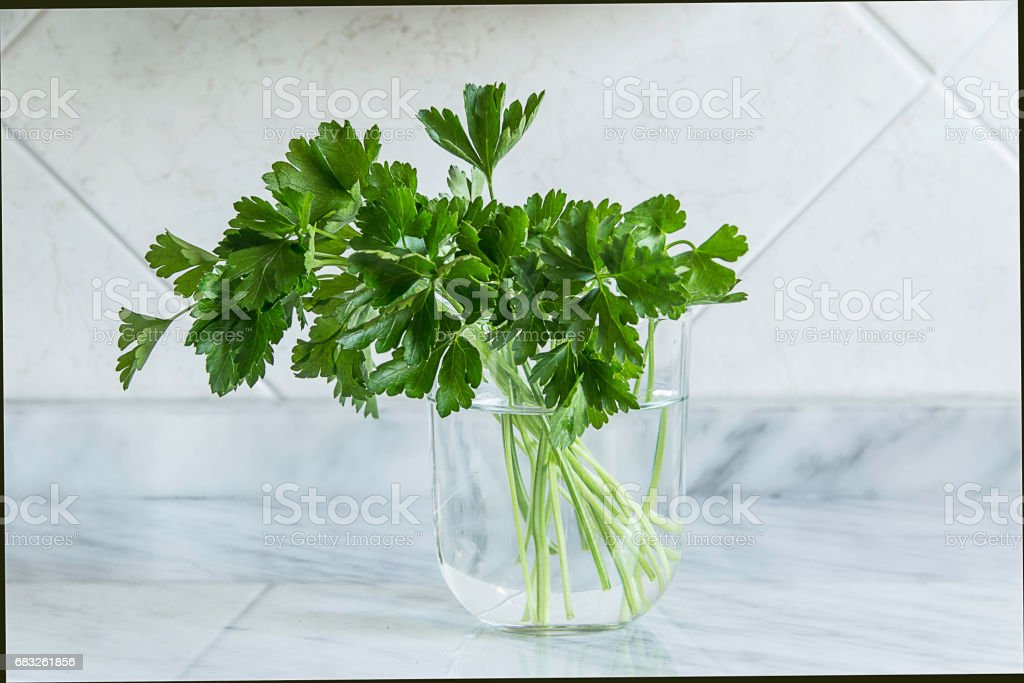 parsley on a jar on white stone background - foto stock
