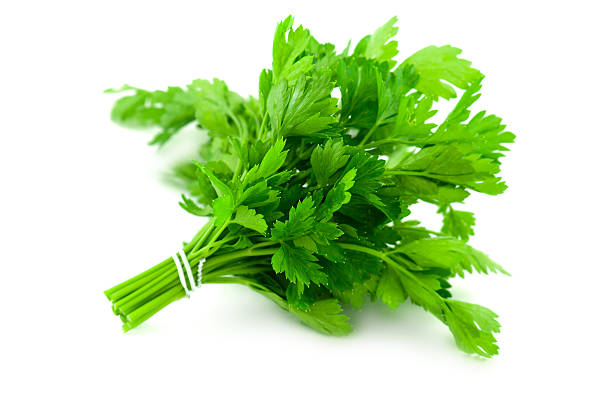 parsley - parsley stock photos and pictures