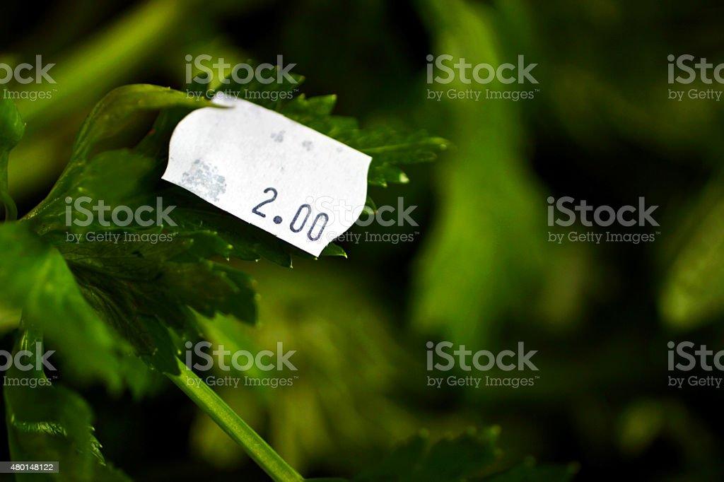 Salsa etiqueta de preço no mercado - foto de acervo