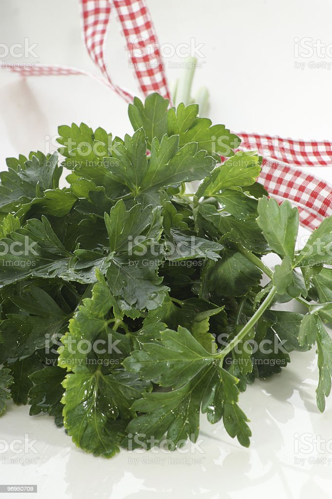 Parsley with a white and red ribbon royalty-free stock photo
