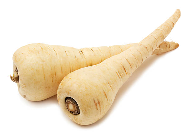 Parsnip isolated stock photo