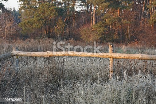 istock part of a rural fence made of brown wooden planks in gray dry grass 1296702959