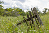 istock Part of a weathered wooden fence overgrown with grass 1175509340