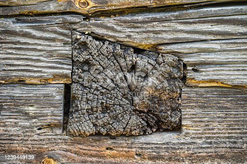 1124475954 istock photo Part of an old log exterior wall 1239449139
