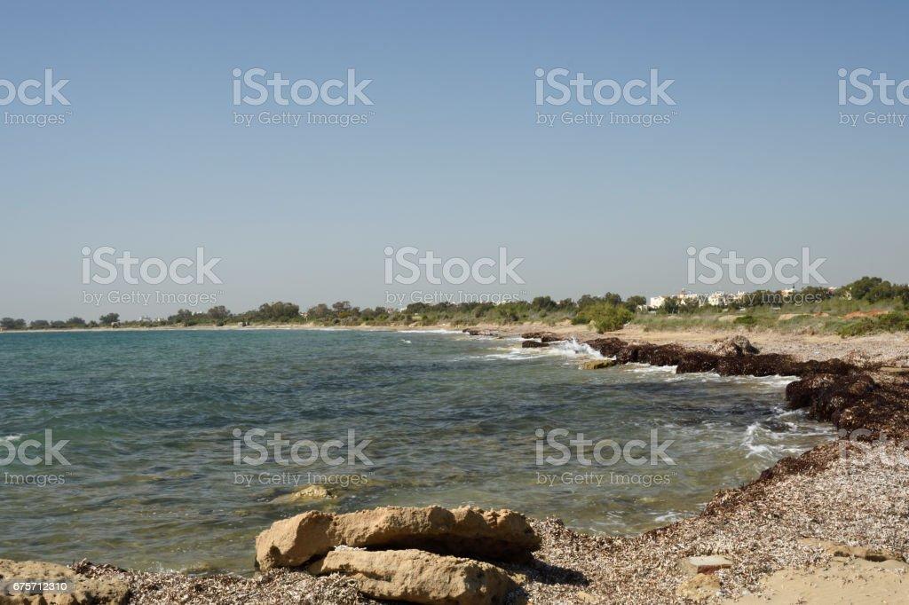 在賽普勒斯北部的部分海灘與清澈的水 免版稅 stock photo