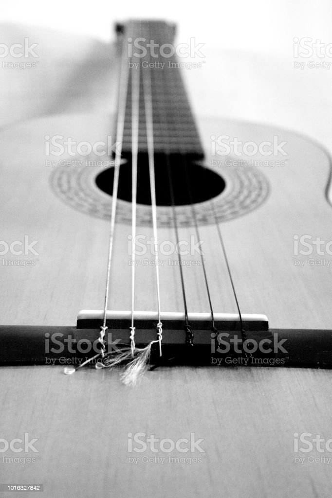 Part of musical instrument with strings. Spanish guitar